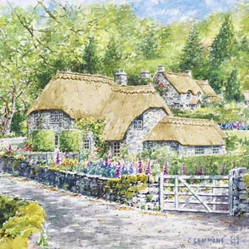 M36012 - Thatched Cottages (1 blank card)~