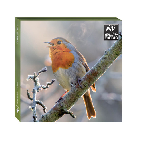 WAL91128 - TWT British Birds (1 wallet of 8 cards)