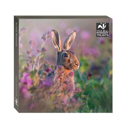 WAL91129 - TWT British Mammals (1 wallet of 8 cards)