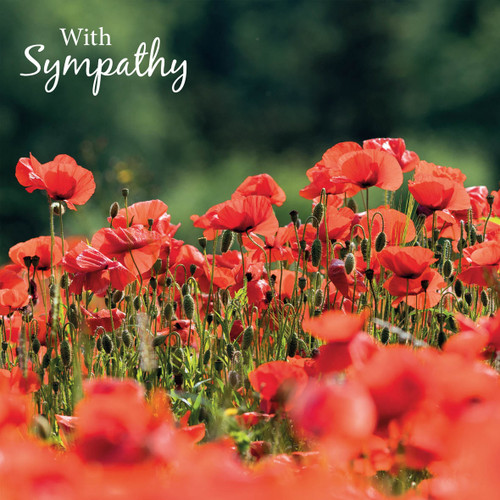 SM14225S - Poppies (1 sympathy card)