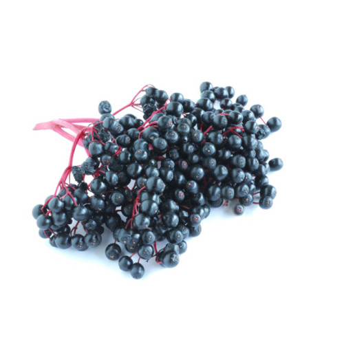 Elderberry Powder-Premium