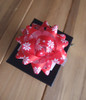 "Red & White Poinsettias 2"" Star Bows"