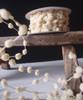 Ivory Mini Wired Pom Pom Trim