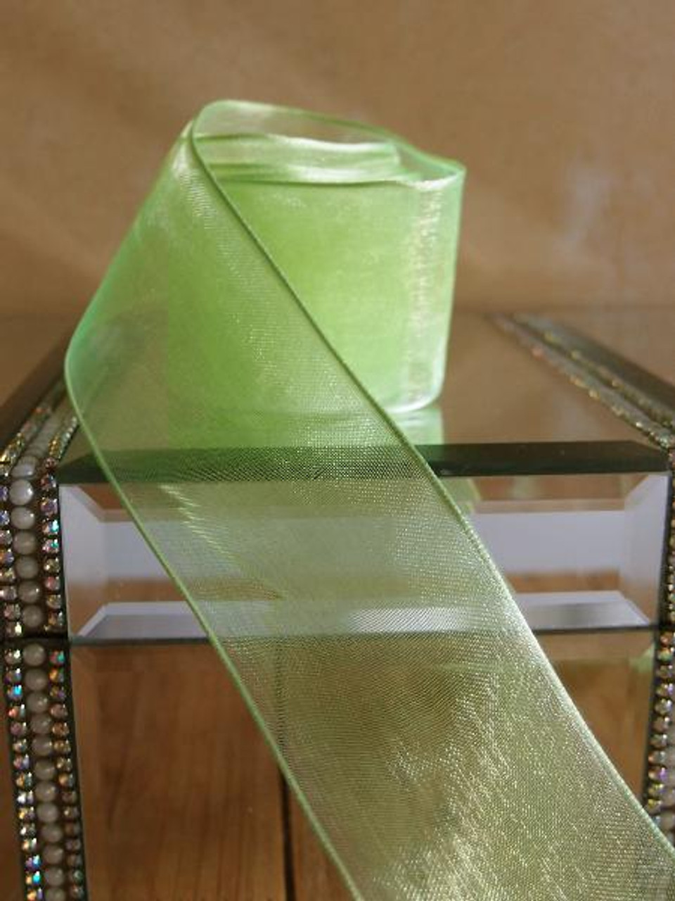 Neon Sheer Ribbon with Wired Edge (1 size)