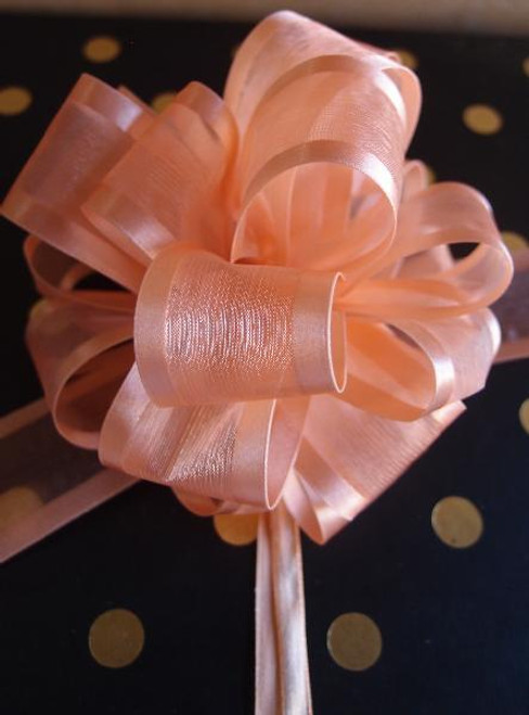 Peach Sheer w/Satin Edge Pull Bow (2 sizes)