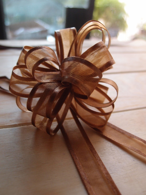 Wholesale Pull Bows, Chocolate Pull Bows, Sheer with Satin Edge Pull Bow | Packaging Decor
