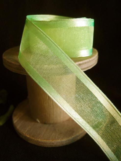 Neon Sheer Ribbon with Satin Wired Edge (3 sizes)