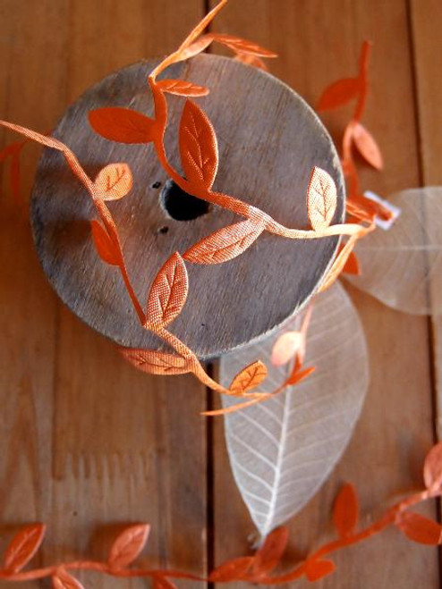 Orange Leaf Ribbon
