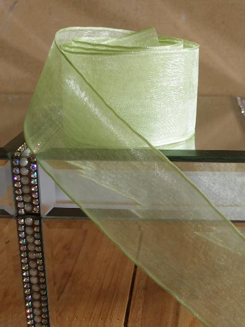 Mint Sheer Ribbon with Wired Edge (2 sizes)