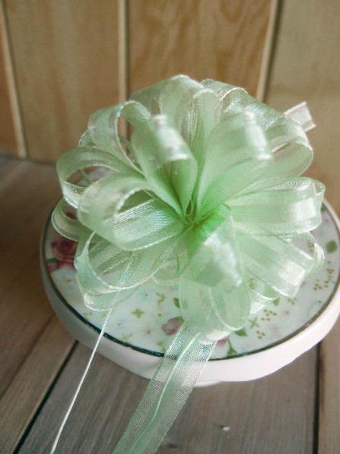 Mint Pull Bow Ribbon