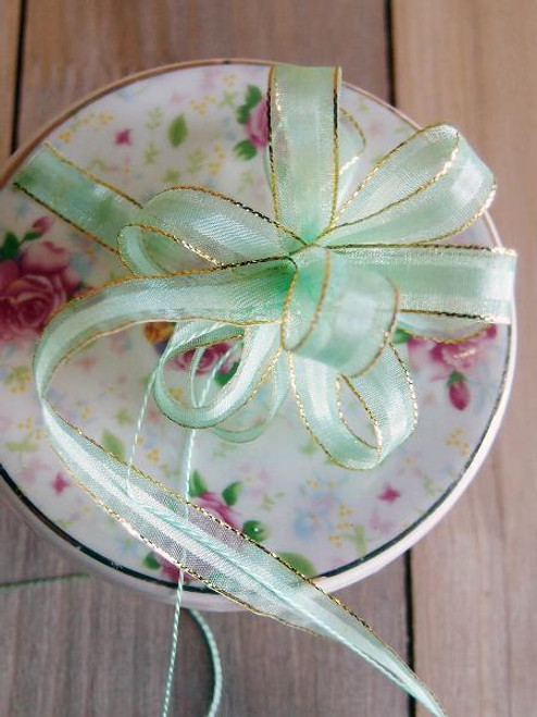Mint  with Gold Edge Pull Bow Ribbon