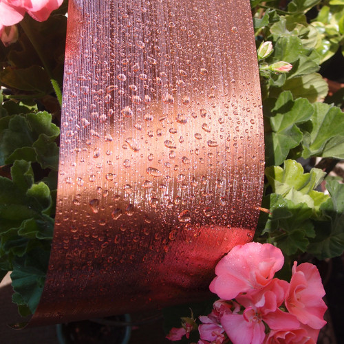 Rose Gold Metallic Aspidistra Leaf Ribbon