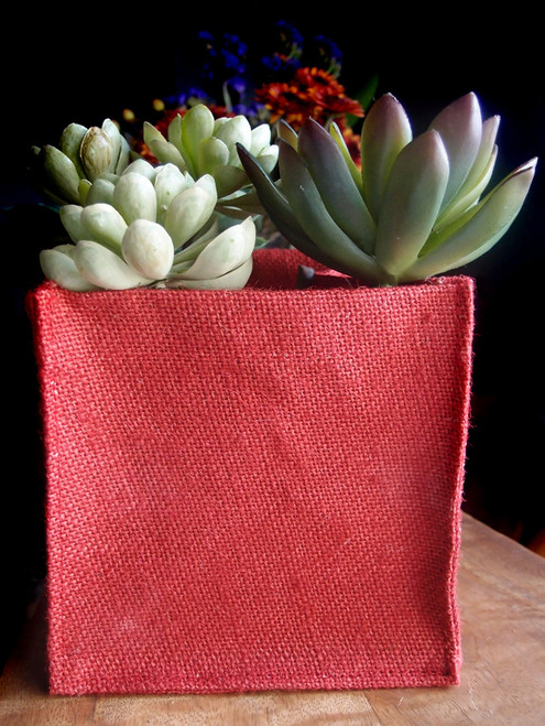 "Red Jute Square Holder 6"" x 6"" x 6"""