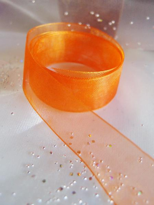 Orange Sheer Ribbon with Monofilament Edge (3 sizes)