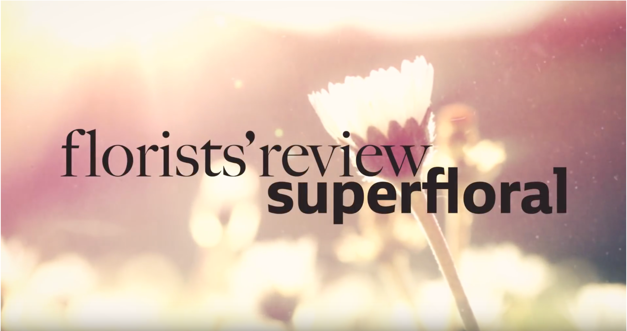 """Florists' Review Presents """"Shimmer,"""" featuring our FiberWeb"""