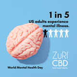 World Mental Health Day: October 10th
