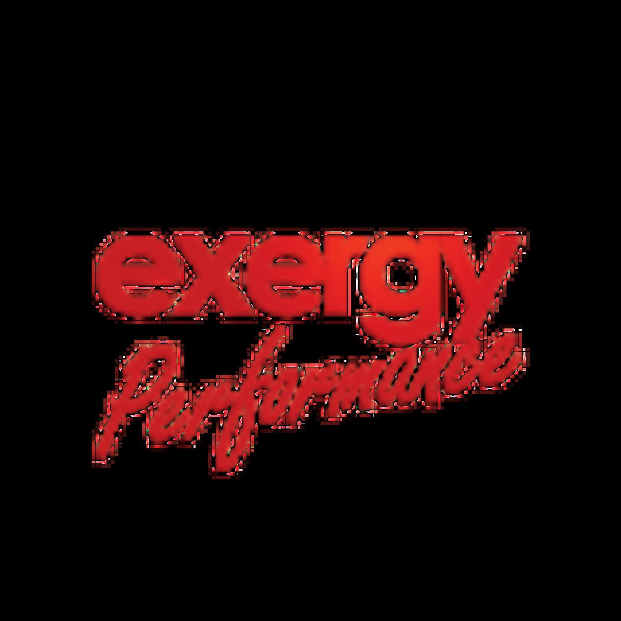 Exergy E06-20450 Fuel Rail | 13-18 Dodge 6.7L Cummins