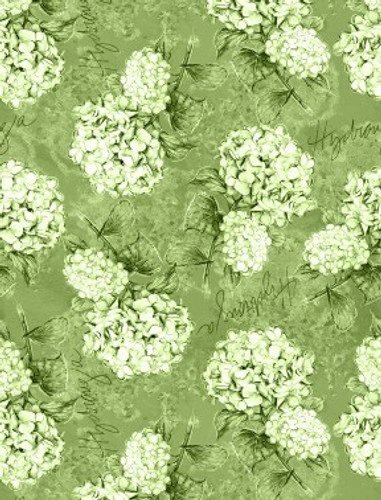 Hydrangea Dreams - Tossed Hydrangeas Green