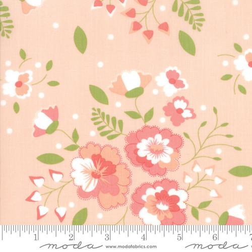 Sugarcreek - Large White Flowers on Peach