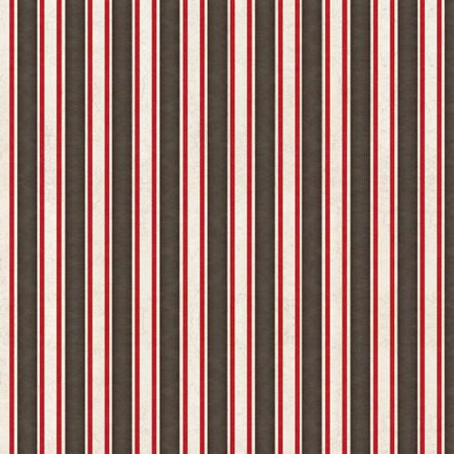 Monkey Biz-Ruled Stripe- 1649-28371-KJ