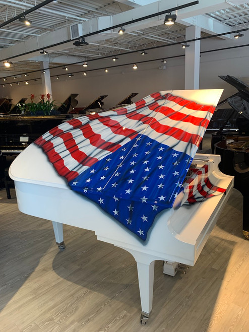 NEW Baldwin One Of A Kind Handcrafted, Hand Painted, Custom Baby Grand Piano