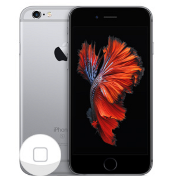 iPhone Repair - iPhone 6s Plus Home Button Replacement