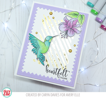 Hummingbird Clear Stamps & Dies