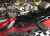 Misty Mountain Sheepskin Seat Cover (Full Seat Cover) (MM-4400-BLK)  Shown on 2020 Can Am RT (BLACK)