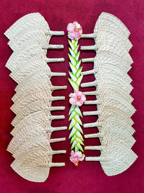 Samoan Wedding Fans PLAIN SET of 24