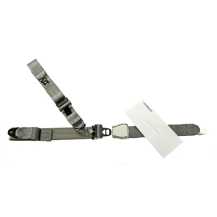 Fixed Strap 3 Point Restraint