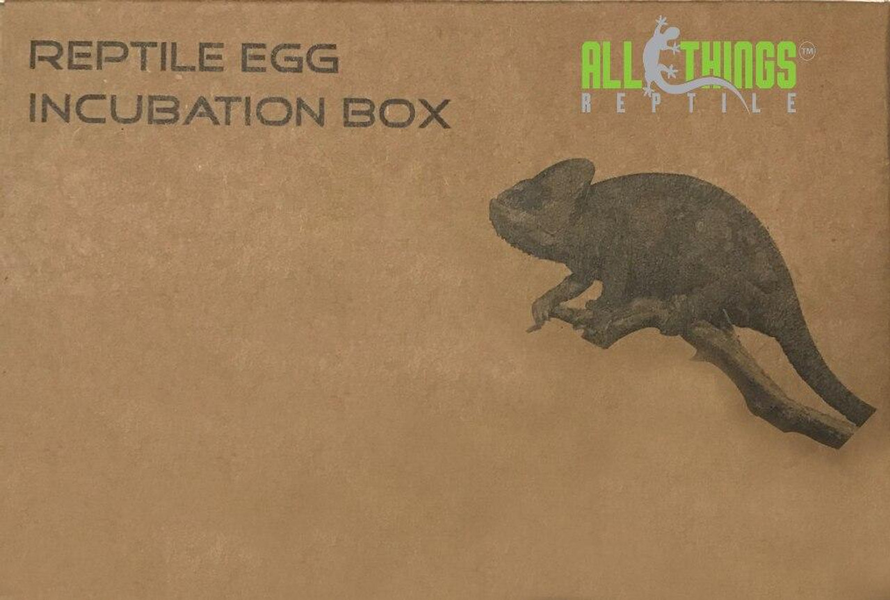 All Things Reptile 12 Egg Incubation Tray with Container and Lid