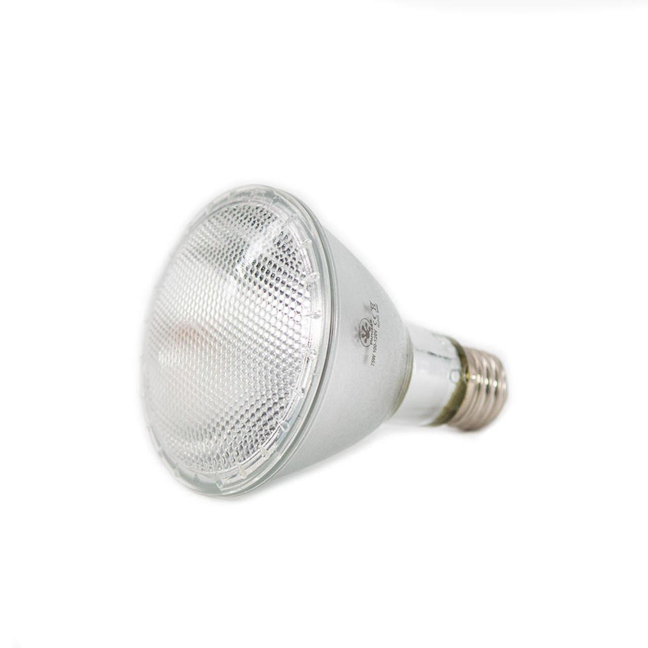 Pangea Pangea 75w Pangea Halogen Heat Lamp-4pk