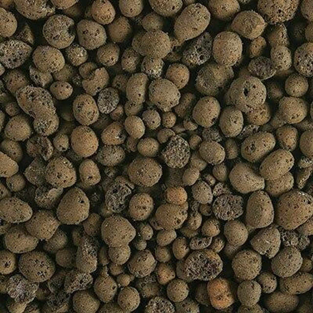 All Things Reptile Expanded Clay Ball Terrarium Substrate 3Lbs Hydroballs