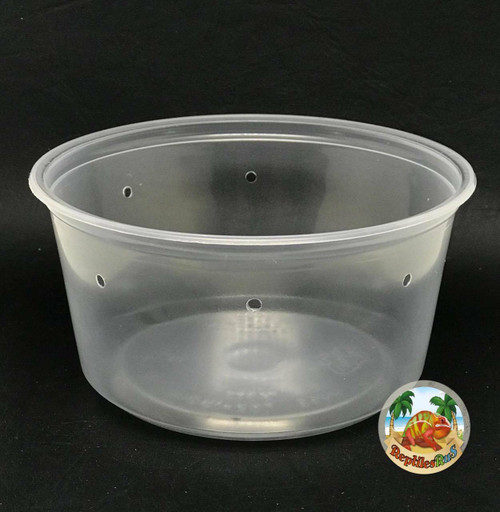 All Things Reptile Slightly Opaque 4.5 Pre-punched Deli Cup 12oz 10 PACK