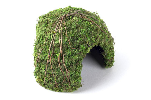 Galapagos Galapagos Mossy Dome/Hide/Cave, Green, 6 Diameter