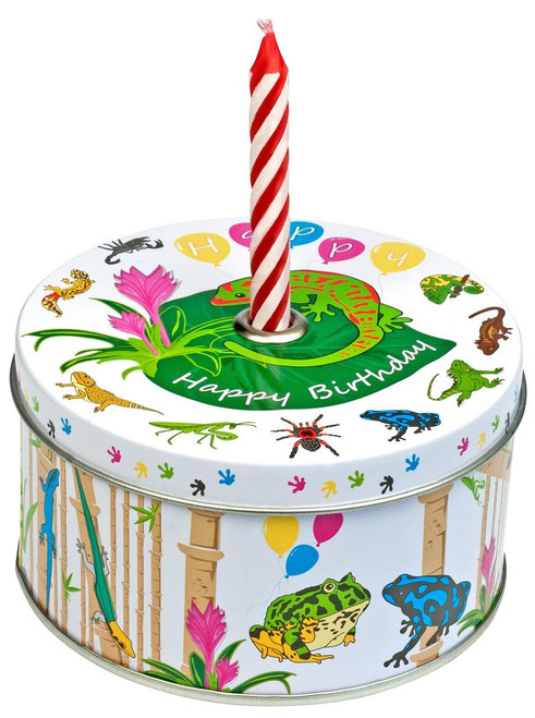 All Things Reptile Gift Box Reptiles with Candle and Confetti