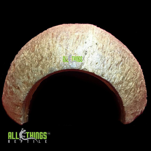 All Things Reptile Coconut Hide Long