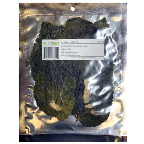 All Things Reptile ATR Mullberry Leaves Dried Grade A 10 Pack