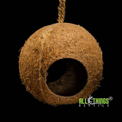 All Things Reptile Hanging Coconut Reptile Hide Large Round 2 Hole