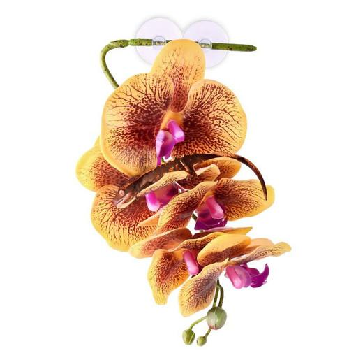 Pangea PANGEA HANGING ORCHIDS - YELLOW