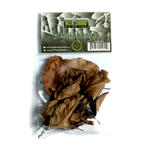 All Things Reptile Veralu Ceylon Olive Mix Size Leaves 20-pack