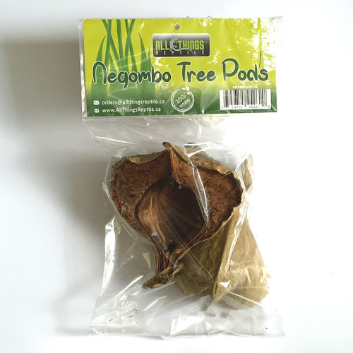 All Things Reptile Negombo Tree Pod 2-pack