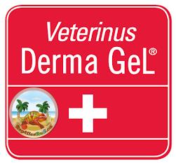 Veterinus