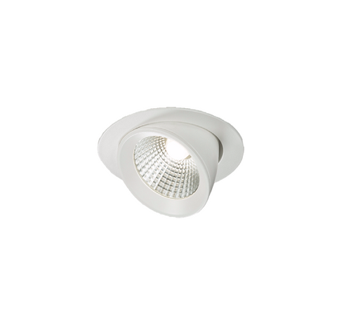 230V 15W Round LED Recessed Adjustable Downlight (DFL1WW15C)