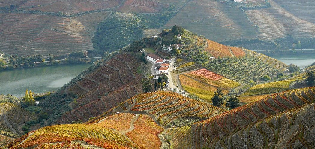 Quinta do Crasto in the Douro