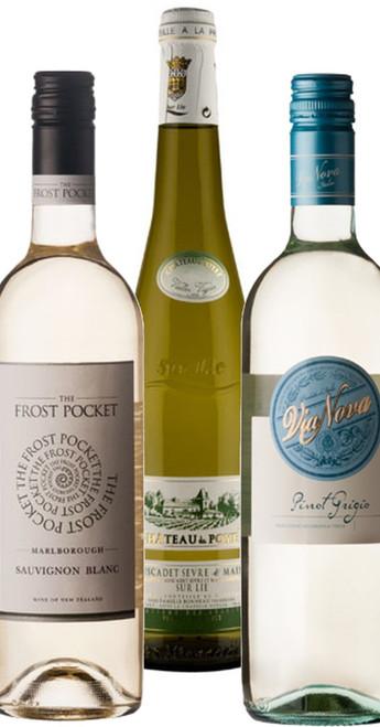 Urban Express Lockdown Whites 6 Bottle Case