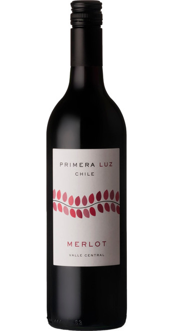 Merlot 2019, Primera Luz, Central Valley, Chile