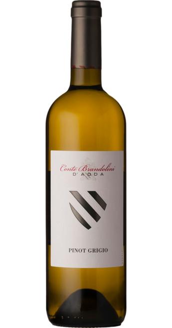 Pinot Grigio DOC Friuli 2018, Brandolini