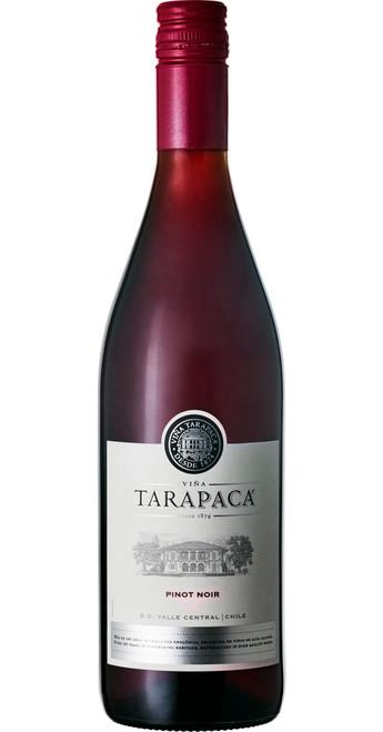 Pinot Noir 2018, Tarapaca, Leyda Valley, Chile