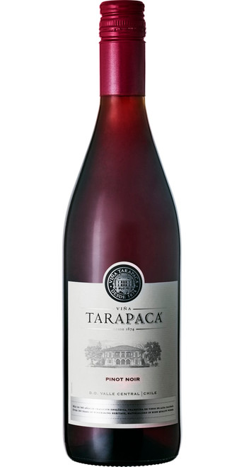 Pinot Noir 2018, Tarapaca, Leyda Valley, Chile